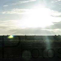 landscape1 (sep)